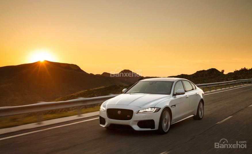 Jaguar XF 2016 mang đến cảm giác mềm mại, cuốn hút  1