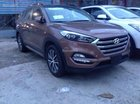 Bán Hyundai Tucson đời 2016, màu nâu, nhập khẩu 100% LH 0939.593.770