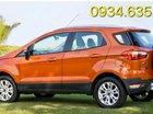 Bán Ford EcoSport đời 2017, giá 600 triệu, có sẵn xe giao ngay, liên hệ: 0934.635.227
