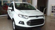 Cần bán xe Ford EcoSport Titanium đời 2017, màu trắng giá cạnh tranh