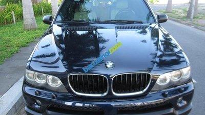 Cần bán BMW X5 3.0 AT đời 2005, nhập khẩu chính chủ, giá 540tr