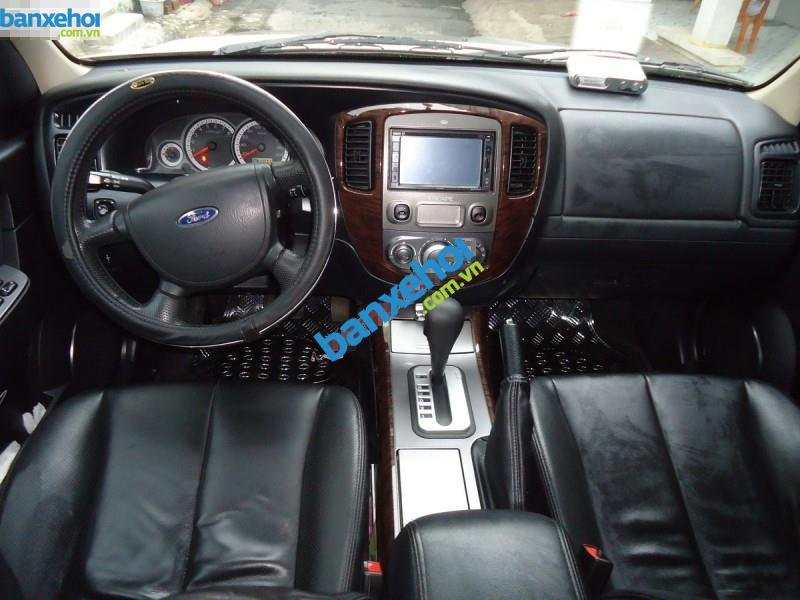 Xe Ford Escape XLT 4x4 2010-8