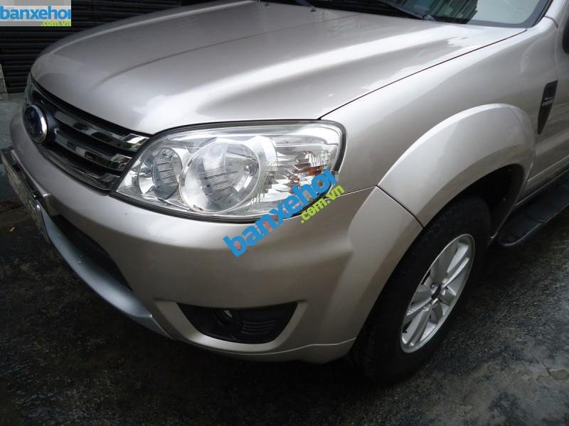 Xe Ford Escape XLT 4x4 2010-1