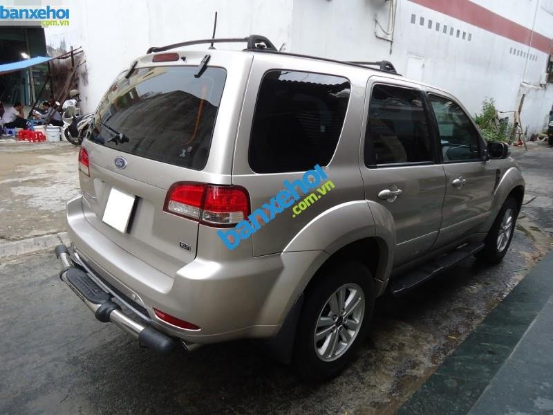 Xe Ford Escape XLT 4x4 2010-5