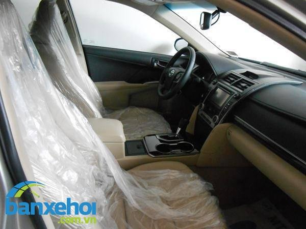 Xe Toyota Camry XLE 2013-8