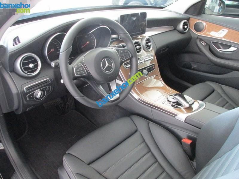 Xe Mercedes-Benz C class C250 Exclusive 2015-5