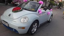 Bán Volkswagen Beetle AT sản xuất 2005, xe cũ