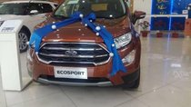 Bán xe Ford EcoSport sản xuất 2018