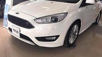 Xe Ford Focus 1.5 Sport 2018