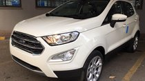 Ford Ecosport 1.0L EcoBoost 2018 - Xe giao ngay - Hỗ trợ trả góp 85% - Hotline 090 628 3959 / 096 381 5558